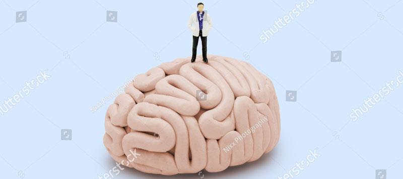http://www.neurosurgery.co.il/sysvault/docsfiles6/cd5b9de037-5f66-44db-817c-f32f9c8490fb.jpgalt